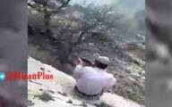 سوزاندن و کشتار دردناک یک پلنگ در کوههای سردشت + ویدئو