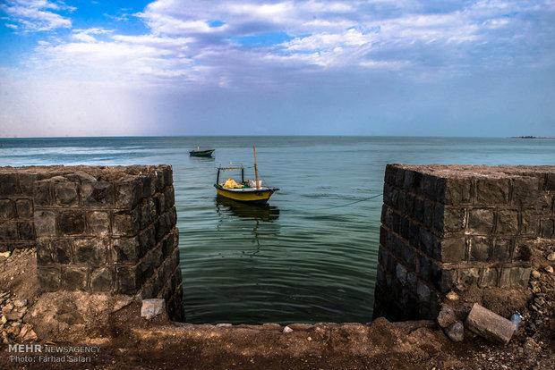 سفری از جزیره قشم به سه جزیره هیجان انگیز خلیج فارس
