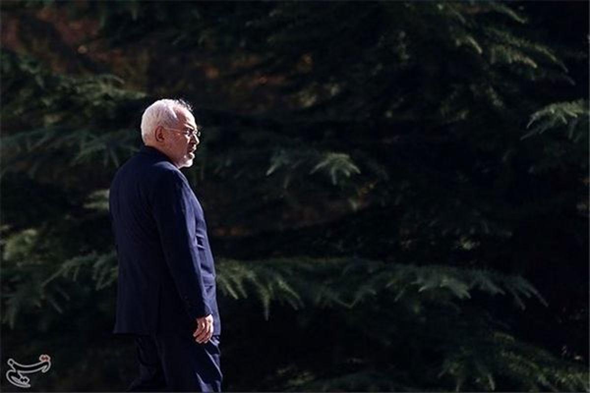 ظریف: خانواده شهید سلیمانی بنده را ببخشند