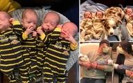 در دالاس آمریکا تولد چهار قلو یکسان با وجود شانس ۱ در ۱۵ میلیون