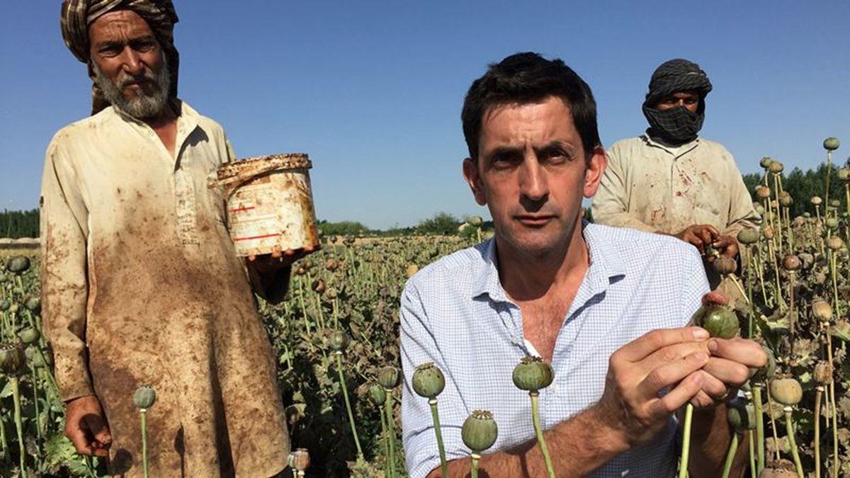 افزایش تولید تریاک در افغانستان و هروئین در جهان با انرژی خورشیدی