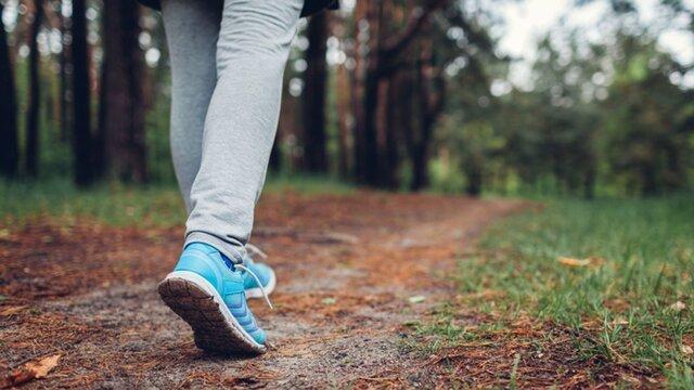 نکاتی مفید در مورد پیاده روی که شاید ندانید