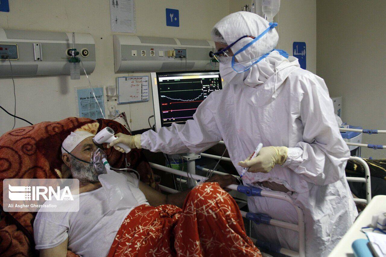 ملک زاده: ویروس کرونا عفونیتر شده است