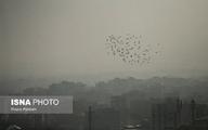 آلودگی هوا براحتی به داخل منازل رسوخ کرده