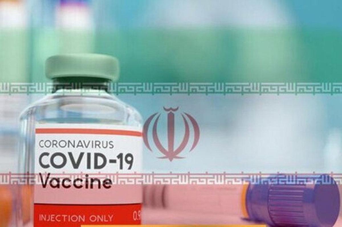 واکسن کرونای تولید ایران به چهار داوطلب دیگر تزریق شد