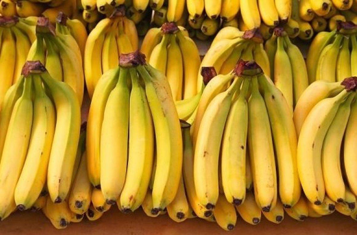 قیمت موز و آناناس پایین آمد اما نه خیلی!