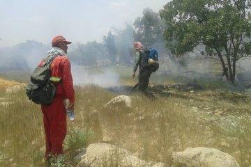 سوختن بیش از ۱۵۰ هکتار جنگل و مرتع گچساران در آتش