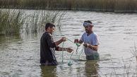 تصاویر دیدنی از ماهیگیری در حاشیه جاده شادگان| رونق اقتصادی با ماهیگیری در حاشیه جاده شادگان