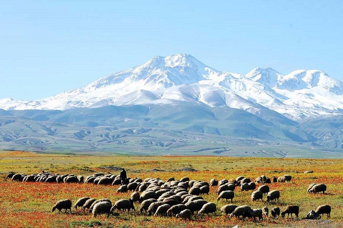 کوه سبلان جهانی می شود