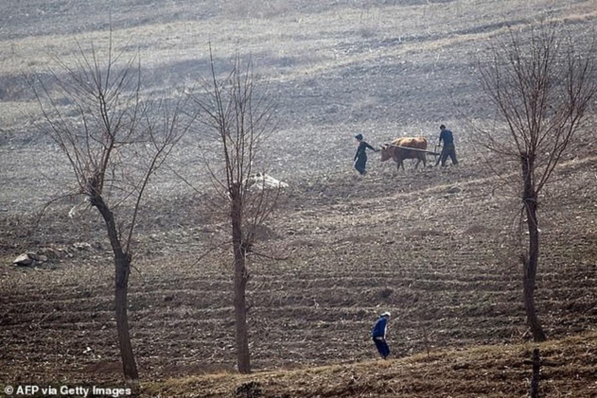 اشد مجازات در انتظار اسرافکنندگان مواد غذایی