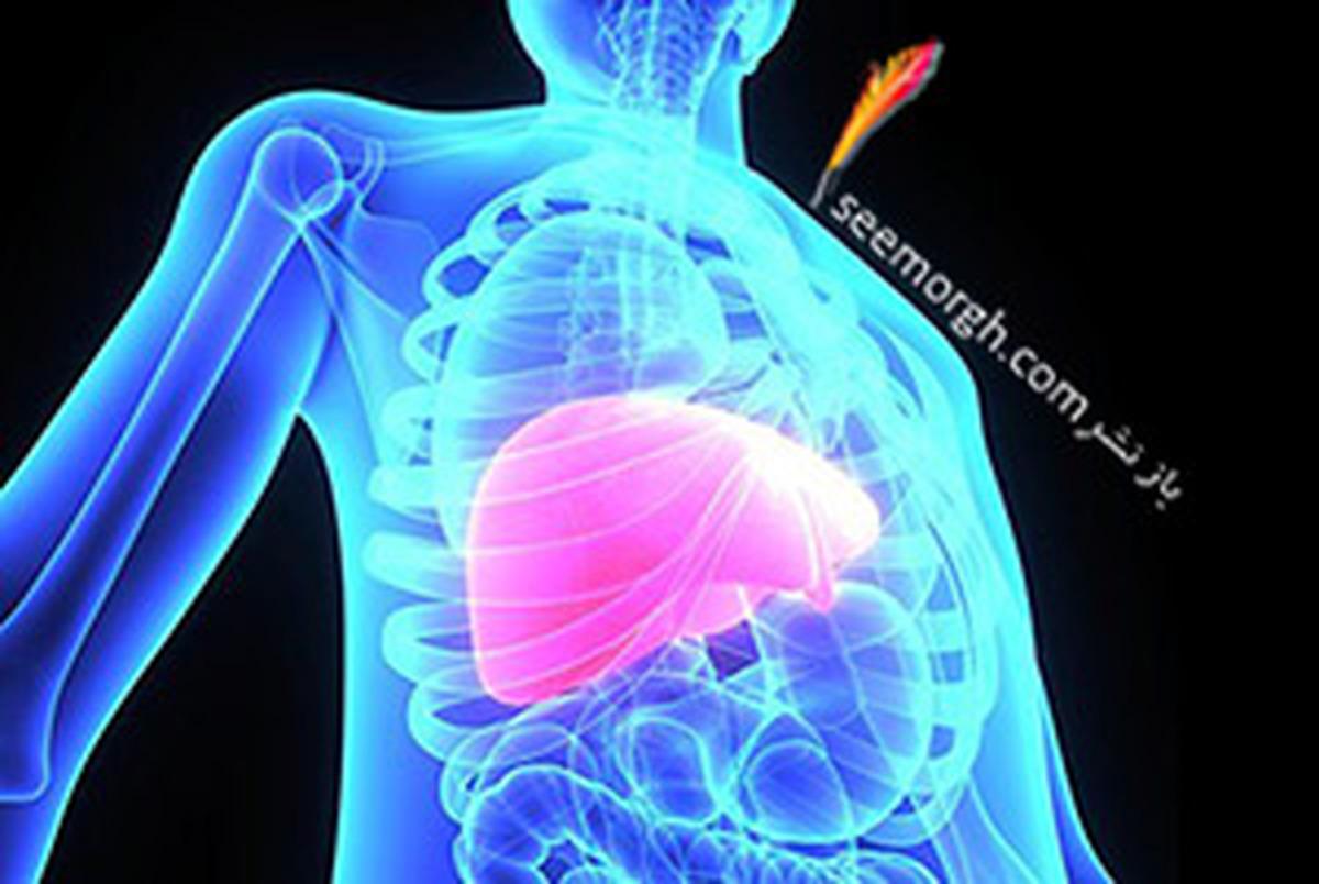 فیبروز کبدی چیست؟ آیا فیبروز درمان می شود؟