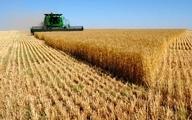 تغییرات راهبردی در بخش کشاورزی چه ضرورتی دارد؟