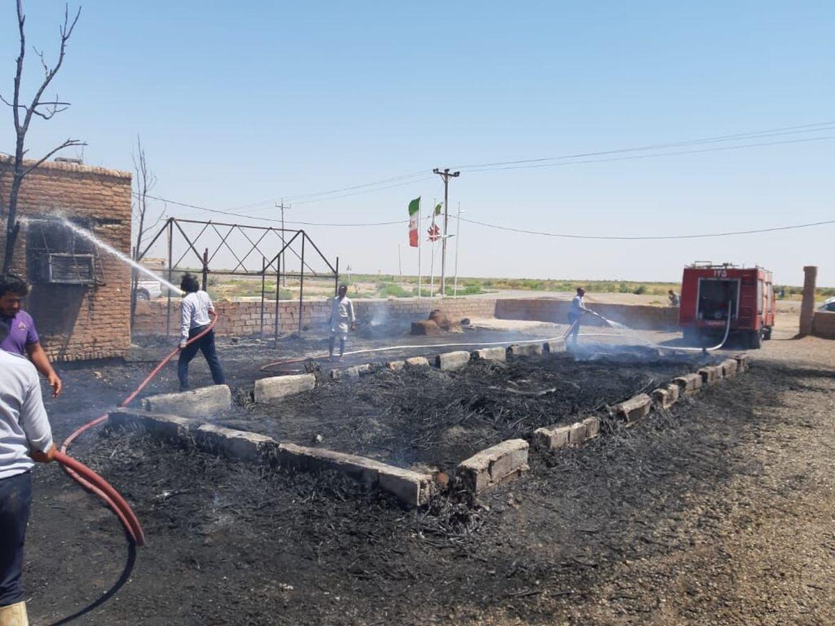 تخریب عمدی اثر گردشگری در دشت آزادگان با آتش