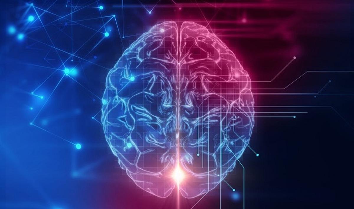 ذهن گروهی    چگونه هوش افراد بر عملکرد اقتصادی جامعه تأثیر می گذارد؟