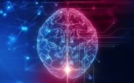 ذهن گروهی  | چگونه هوش افراد بر عملکرد اقتصادی جامعه تأثیر می گذارد؟