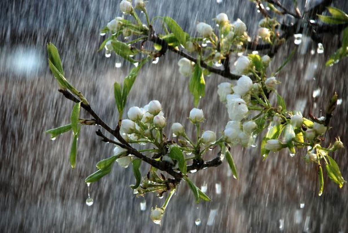 بارش های بهاری همراه با باد و رعدو برق ادامه دارد