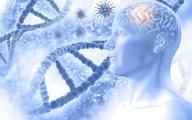 پیشگیری از آلزایمر با تغذیه سالم|غذاهای پرچرب نخورید