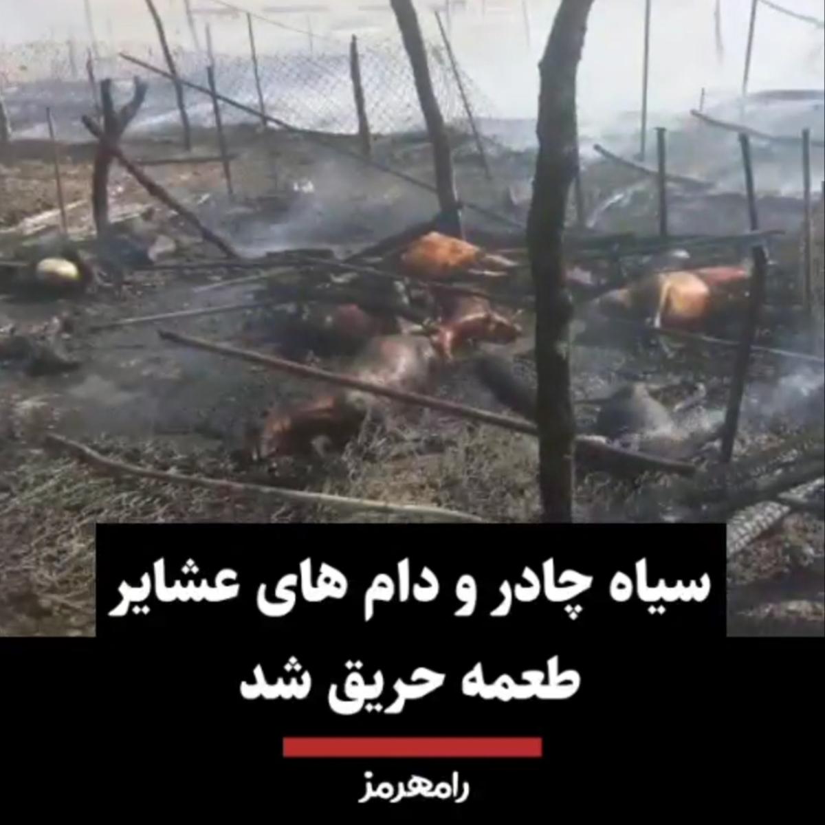 سیاه چادر و دام های عشایر طعمه حریق شد + ویدئو