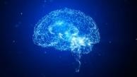 پلاک های مغزی قبل از سایر علائم آلزایمر بروز می کنند