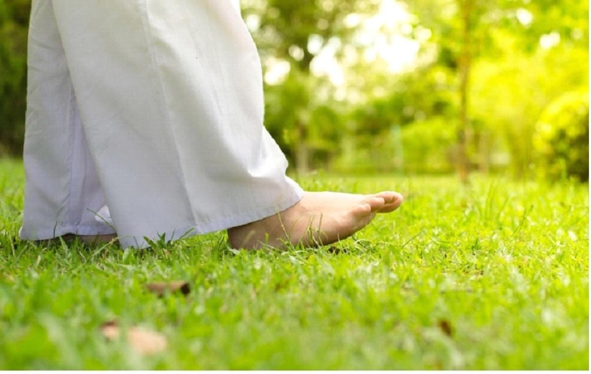 پیادهروی، نوعی مراقبه برای کاهش استرس