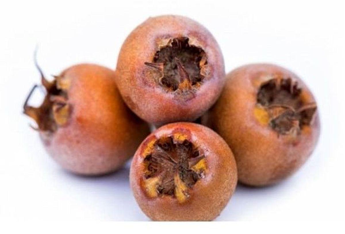 کم خونی و آلزایمر را با این میوه نچندان زیبا درمان کنید!