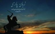 زبان فارسی همچون طفل بیسرپرست شده است
