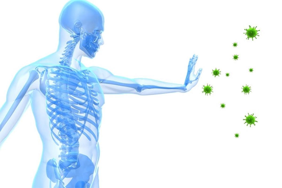 سیستم ایمنی بدن انسان آمادگی رویارویی با محیط بهداشتی دنیای مدرن را ندارد