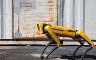 سگهای رباتیک به نیروی پلیس هاوایی ملحق  شدند