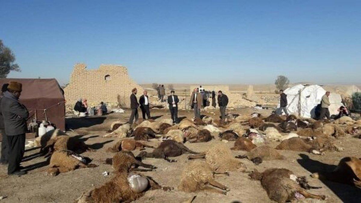 افزایش شمار مصدومان زلزله آذربایجان