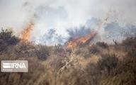 آتش سوزی منطقه دهرود دشتستان همچنان ادامه دارد