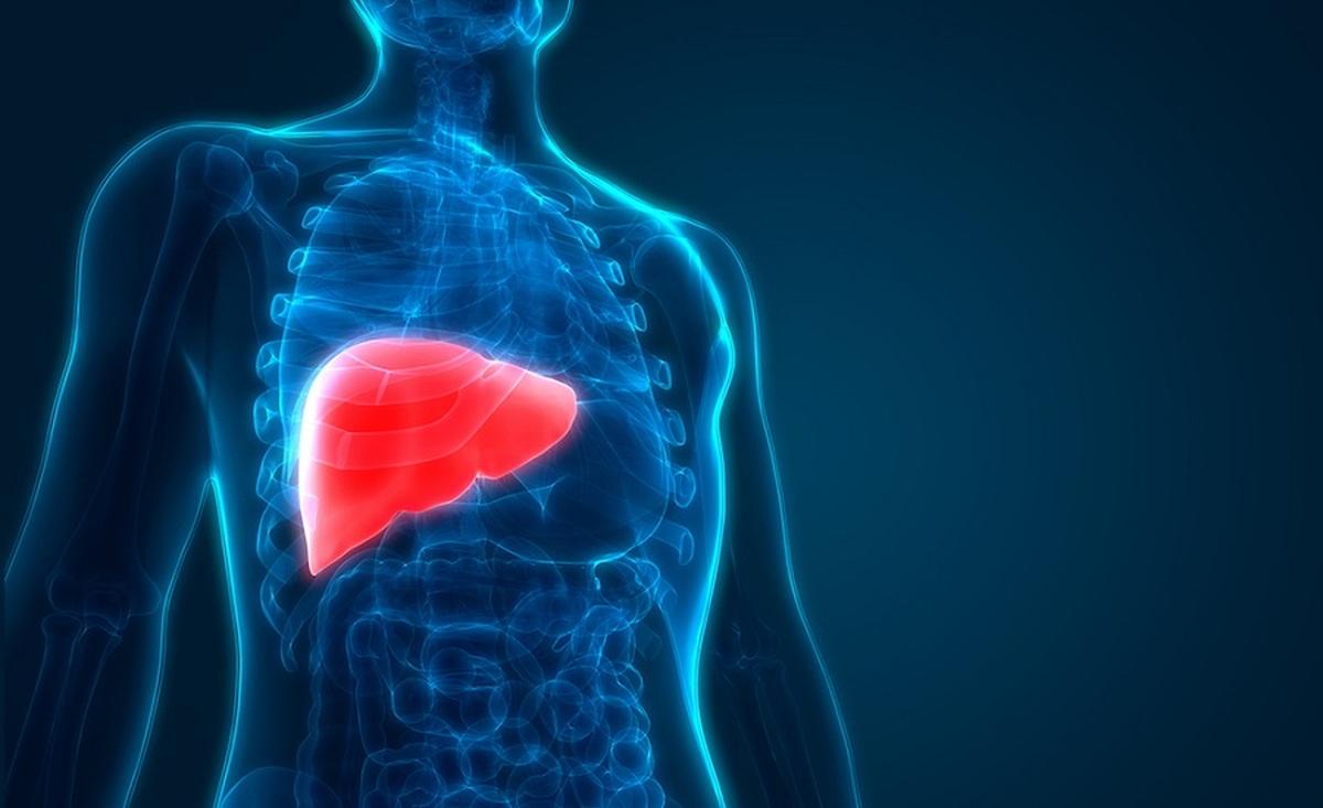 کبد چرب غیرالکلی و سرطان کبد و نقش آلودگی هوا در پیشرفت این بیماریها