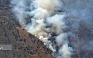جنگل های ارسباران قربانی بدهی ۳۰ میلیاردی شدند