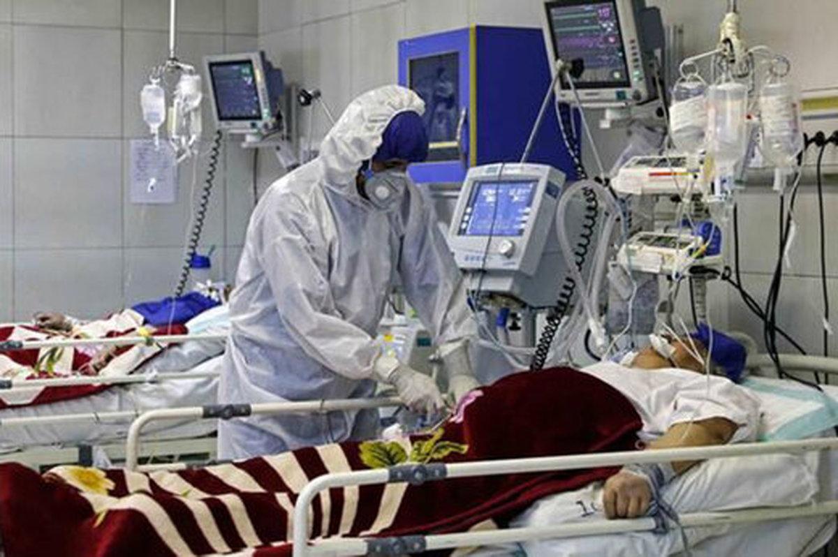 بستریها و فوتیهای کرونایی در استان بوشهر روند کاهشی دارد