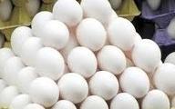 ویژگی مصرف تخممرغ برای تقویت بدن