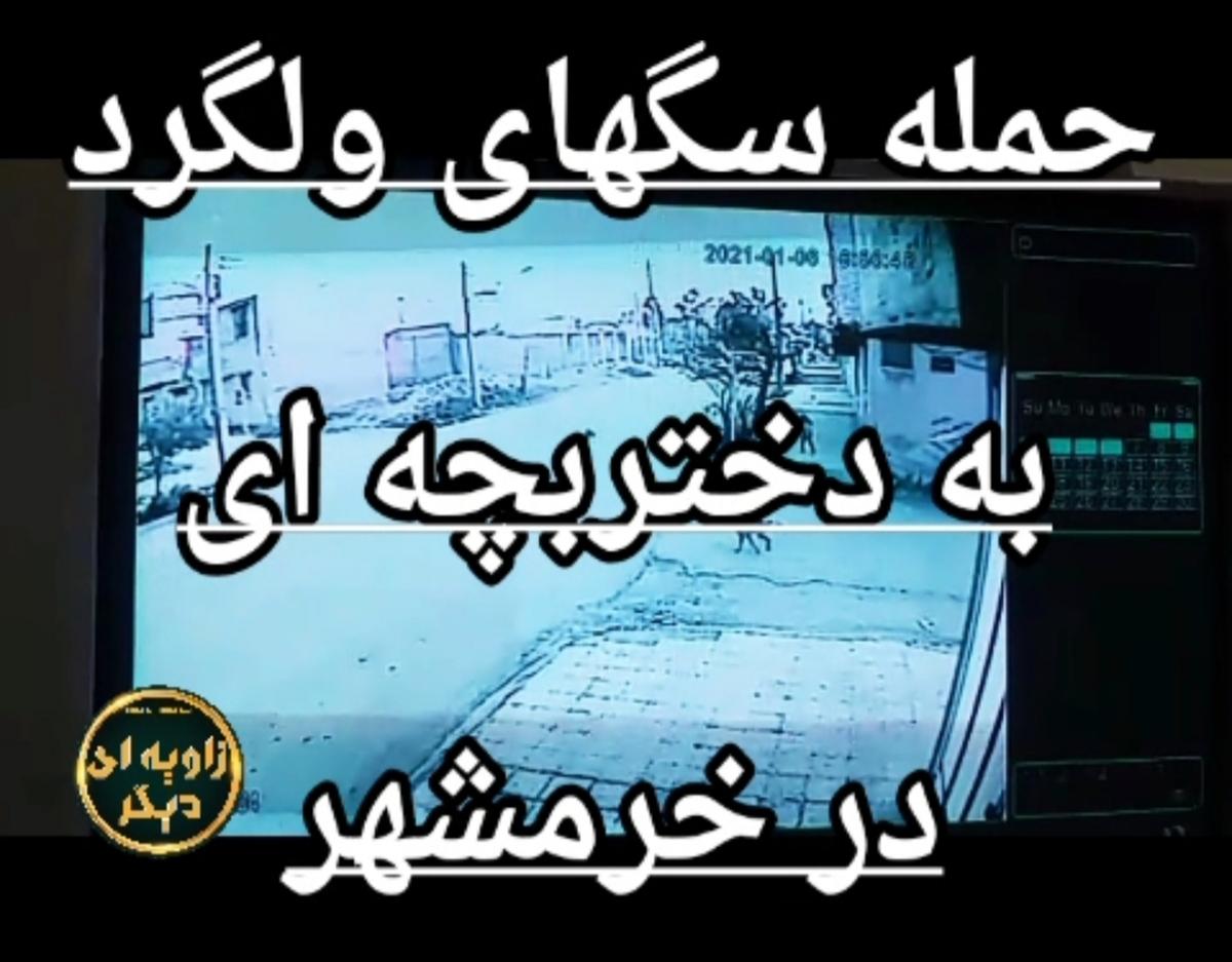 حمله سگهای ولگرد به دختر بچه ای در خرمشهر + ویدئو