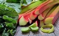 ریواس، سوغاتی فصل بهار در چاقی و پرفشاری خون بارداری مؤثر است.