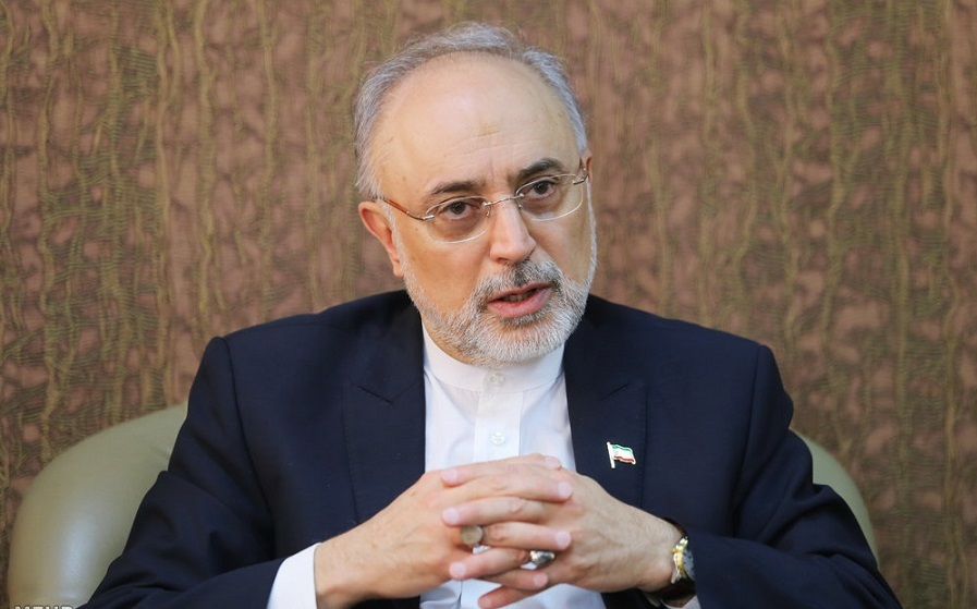 صحبت های علی اکبر صالحی از توافق با آژانس