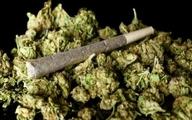 علف و اثرات این مخدر همیشه در دسترس!