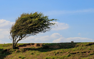 هشدار هواشناسی | باران و تند باد در ۸ استان