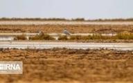 تالاب بینالمللی گاوخونی  |  96 درصد بطور کامل خشک شده  است