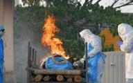 زن هندی چند روز بعد از سوزانده شدن به خانه بازگشت!