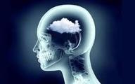 مغز ما چگونه میاندیشد؟