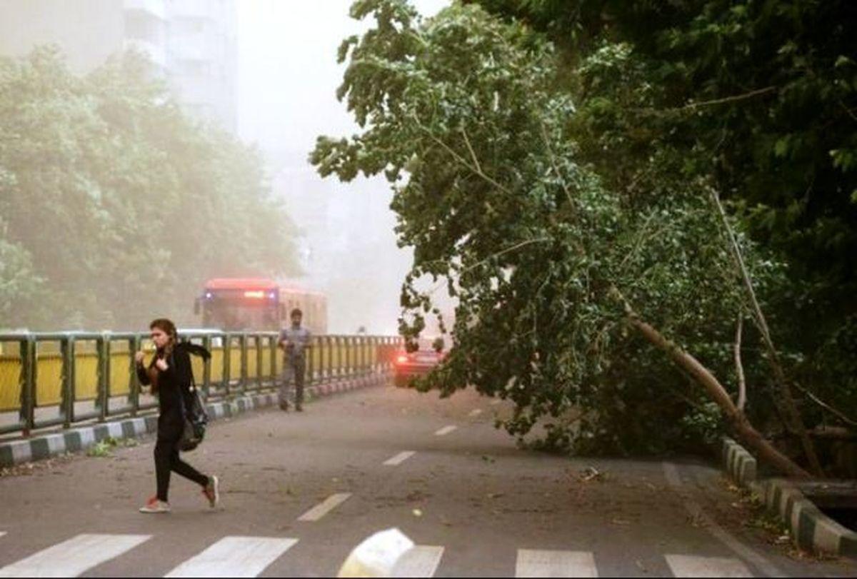 احتمال وقوع تگرگ در مناطق مستعد |  وزش باد شدید در تهران