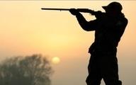 کشتار خرگوشهای وحشی در استان بوشهر   متخلفان شناسایی شدند