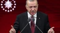 اردوغان   |   کسانی که از ترکیه انتقاد میکنند، خود حامی تروریستها هستند