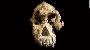 چهره قدیمیترین انسانهای اولیه رونمایی شد