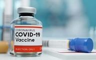 افزایش امیدواری دانشمندان برای ساخت واکسن کرونا