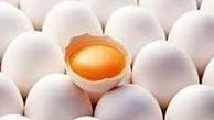 قیمت تخممرغ باز هم افزایش می یابد؟