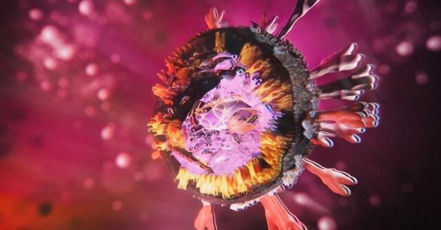 دانشمندان آمریکایی  |  جهش کروناویروس میتواند ماسک زدن و فاصله اجتماعی را بیاثر کند