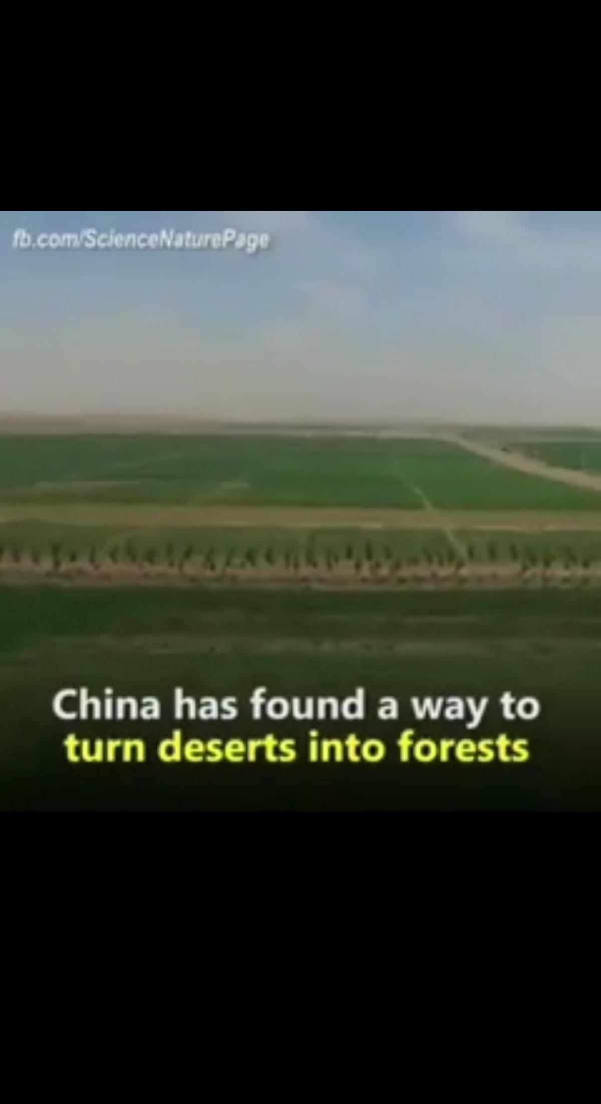 چینیها در مدت ۶ ماه بیابان بی آب و علف رو تبدیل به جنگل میکنند! + ویدئو